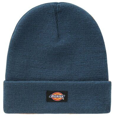 Шапка Dickies Gibsland Coral Blue